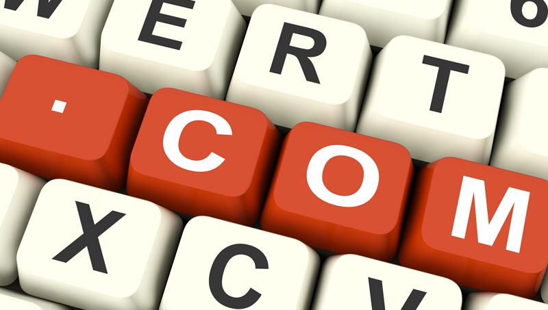COM, NET으로 대표되는 'gTLD'의 등록 주기