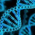 DNS 기초 지식 – 컴퓨터의 실체와 작동 원리 下