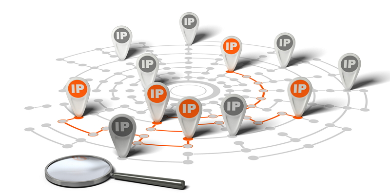 IP와 호스트명